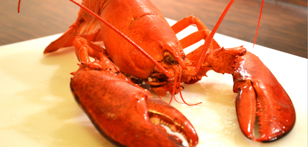 Boiled lobster with wine sauce