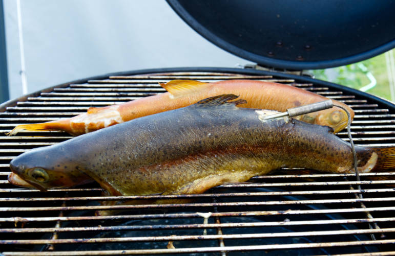 Warm, smoked trouts
